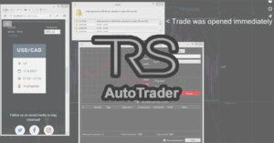 The Real Signals Auto Trader