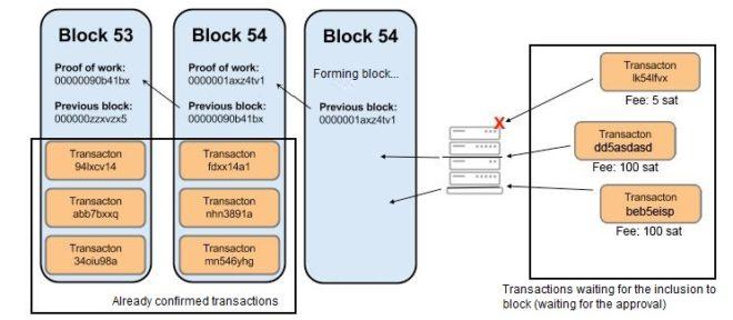 low fee transations